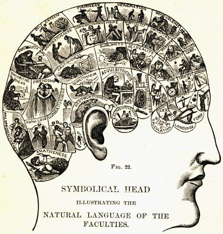 simbolic head